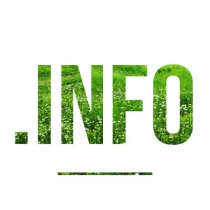 Регистрация доменов .info по доступной цене